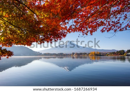 Fuji Mountain Reflection with Red Maple Leaves in Autumn at Kawaguchiko Lake, Japan #1687266934
