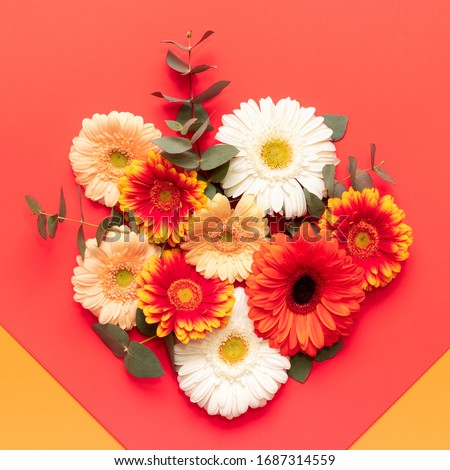 Happy Mother's Day, Women's Day, Valentine's Day or Birthday Living Coral and Lush Lava Background. Floral flat lay greeting card with beautiful gerberas.