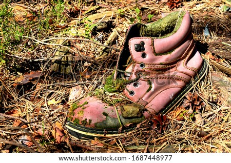 an old moss-covered boot lying in the forest. trash in the forest, clogged planet #1687448977