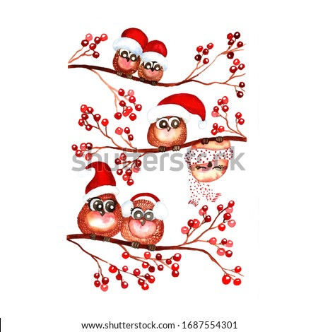 Christmas owls on branches with red watercolor berry on a white background
