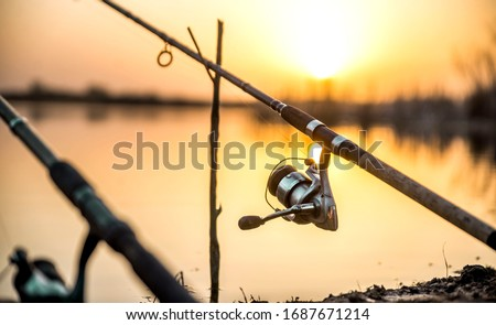 carp fishing rod isolated on lake. feeder fishing reel close up. Royalty-Free Stock Photo #1687671214