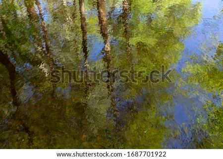Real photography of sunny green trees and blue sky reflected in water outdoors. Abstract beautiful nature photo background.  #1687701922