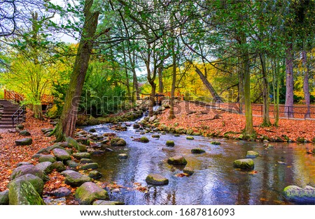 Autumn forest river creek landscape. River creek in autumn park. Autumn park river creek #1687816093