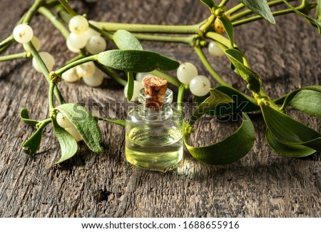 A bottle of essential oil with mistletoe branches