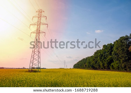 High electric pole in the middle of the blooming rapeseed fields #1688719288
