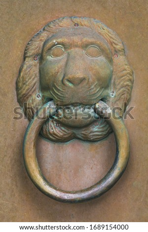 Old copper door at an old church in Sweden with a knocker handle in the shape of a lion head #1689154000