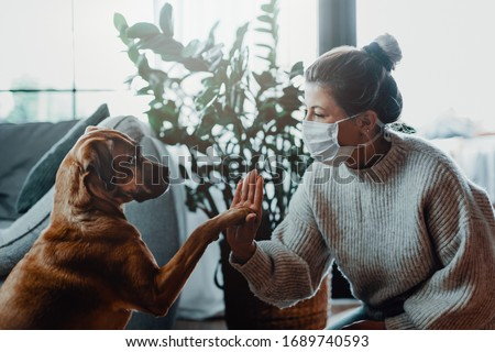 Woman wearing a protective face mask cuddles, plays with her dog at home because of the corona virus pandemic covid-19 #1689740593