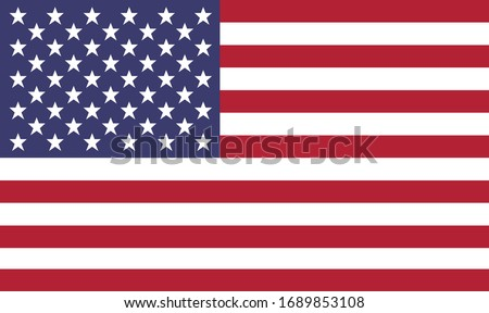 Unites States of America Flag. Flat Vector US flag.