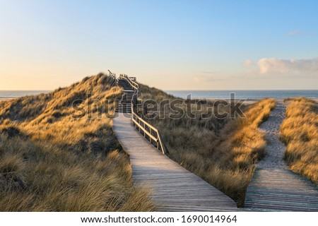 Wooden  footpath through the dunes to the beach of Norddorf on German North Sea island Amrum, late afternoon Royalty-Free Stock Photo #1690014964