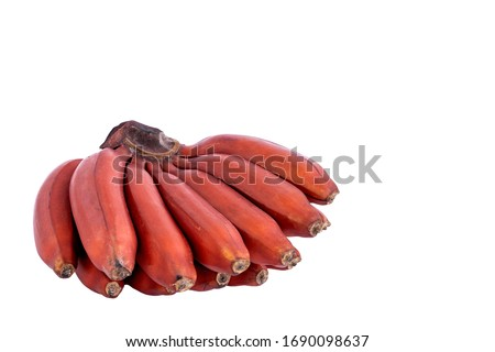 fresh red banana isolated on white background.  group of varieties of banana with reddish-purple skin. Musa acuminata Red Dacca. variety contains more beta carotene and vitamin C than yellow bananas. #1690098637