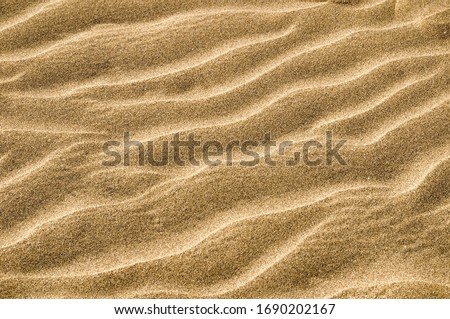 texture of sand, photo picture digital image #1690202167