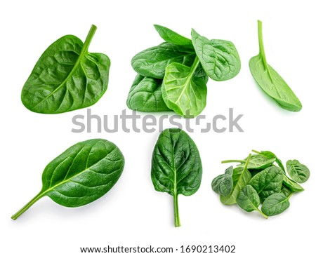 Spinach. Creative layout made of  Spinach leaves   isolated on white background.  Top view. Flat lay. #1690213402