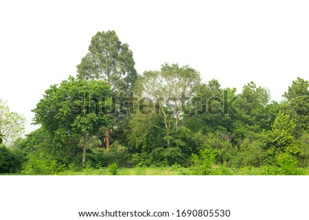 Green treeline isolated on white background. #1690805530