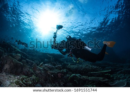 The amazing shot with diver in Komodo, Indonesia