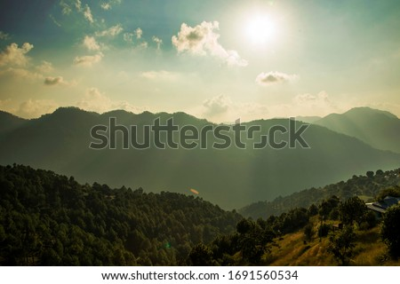 Hills and valleys of Naldehra(Shimla) Himachal Pradesh. #1691560534