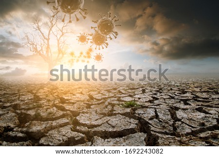 coronavirus covid-19 in the air with lonely dead tree under dramatic evening sunset sky cloudy drought cracked land. Global warming and epidemics concept. #1692243082