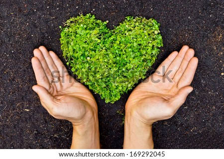 Hands holding green heart shaped tree  / Love nature and save the world / Heal the world / Environmental preservation Royalty-Free Stock Photo #169292045