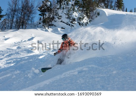 A snowboarder making a powder turn in deep snow on a forest meadow on a sunny morning #1693090369