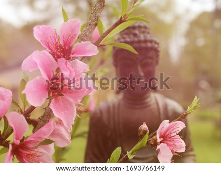 Peach Blossoms with Buddha Statue in Background