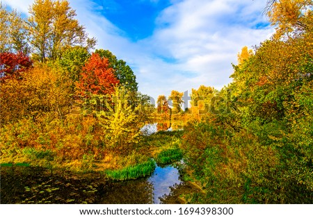 Autumn forest pond landscape. Forest pond in autumn season. Autumn forest pond view. Autumn pond in forest #1694398300