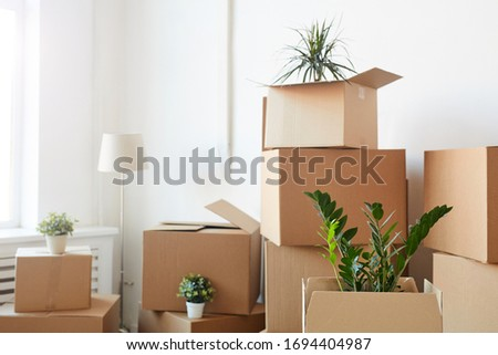 Minimal background of cardboard boxes stacked in empty white room with plants and personal belongings inside, moving or relocation concept, copy space