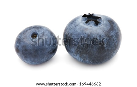 Fresh blueberry or bilberry  isolated on white background #169446662