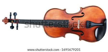Full front view of a new violin with rich, warm wood tones and dark ebony pegs and fretboard. Isolated on white and includes clipping path