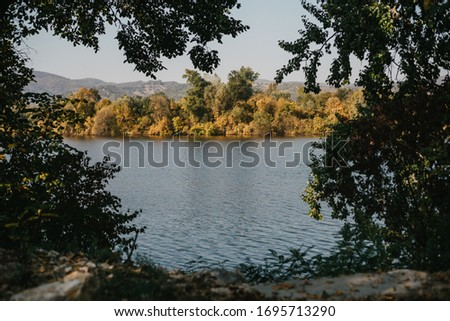 The picture was taken through the trees. Picture of a peaceful lake during the sunny day