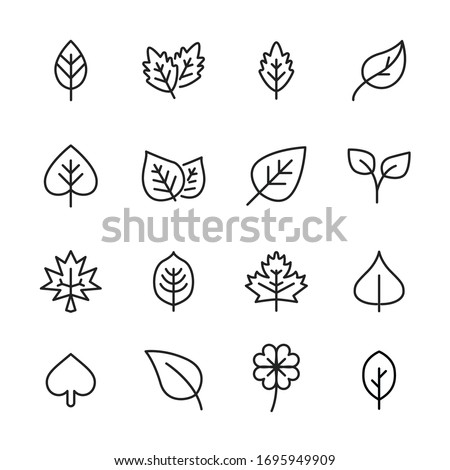 Modern thin line icons set of leaf. Premium quality symbols. Simple pictograms for web sites and mobile app. Vector line icons isolated on a white background. #1695949909