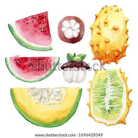 Watercolor set of tropical fruits. Set of exotic fruits. Dragon fruit, kakos, pitaya, mangosteen, papaya, avocado, herimoya, longkong, dooku fruits.