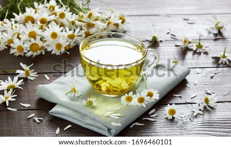Chamomile herbal tea with flower buds nearby on wooden table with textile and camomile bouquet, closeup, copy space, healthy herbal drinks and natural healer concept #1696460101