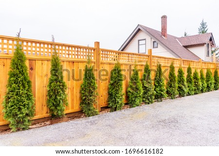 Fence built from wood. Outdoor landscape. Security and privacy concept. Vancouver. Canada. Royalty-Free Stock Photo #1696616182