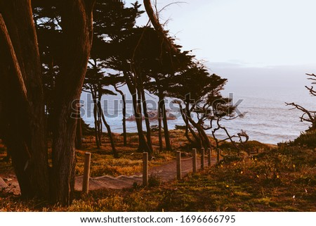 Photo Walk in San Francisco, California