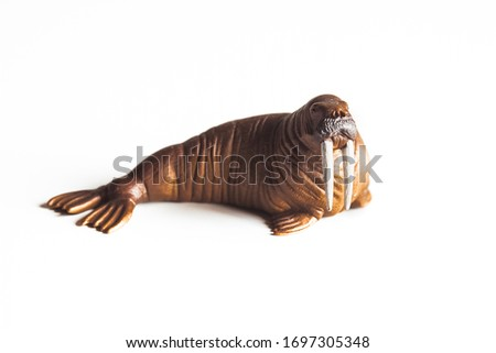 Toy walrus isolated on white background.