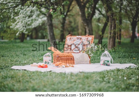 a cozy picnic in nature, in the park, a summer picnic in the countryside, picnic basket, photo shoot of flowering apple trees #1697309968