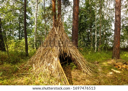 Simple shelter of dry grass in the forest. Survival hut or primitive house in wild nature. Natural sample of construction is shown on a sunny summer day. #1697476513