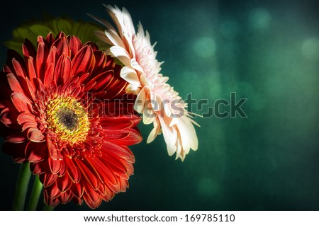 flowers over wooden table on dark background, renaissance still life with dramatic light and textures #169785110