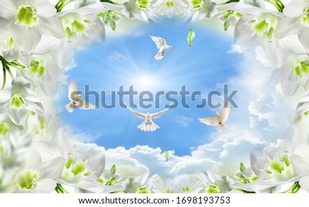 blue sky romantic white flowers