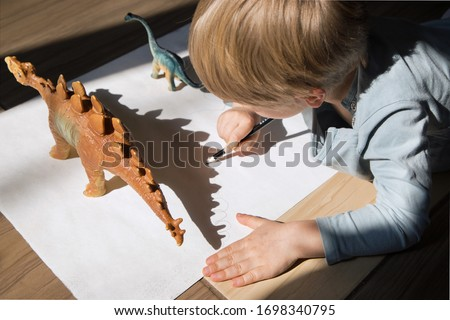 child draws with pencil contrasting shadows from toy dinosaurs. drawing of preschooler, creative ideas for children's creativity. Interesting activities for children during period of self-isolation