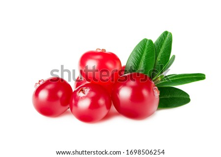 Cranberry with green leaves isolated on white background #1698506254