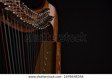 Closeup Detail of Lever Harp High Strings and Levers Royalty-Free Stock Photo #1698648346