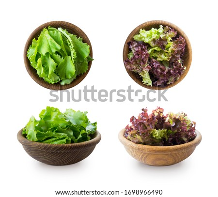 Young lettuce leaves in wooden bowl. Top view. Lettuce isolated on a white background. Green and red lettuce with copy space for text. lettuce leaves isolated on white. Salad from different angles. #1698966490