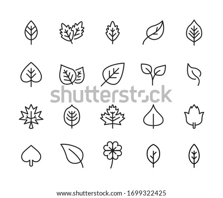 Icon set of leaf. Editable vector pictograms isolated on a white background. Trendy outline symbols for mobile apps and website design. Premium pack of icons in trendy line style.