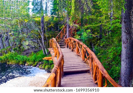 Forest wooden bridge way view. Wooden bridge in forest. Forest river wooden bridge. Wooden bridge in forest scene Royalty-Free Stock Photo #1699356910