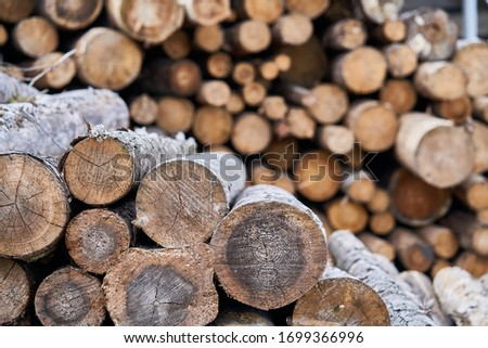 Natural wooden background - closeup of chopped firewood. Firewood stacked and prepared for winter Pile of wood logs. Royalty-Free Stock Photo #1699366996