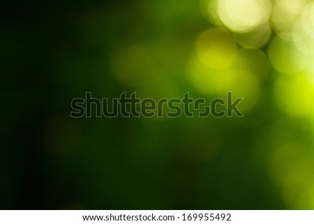 Soft green natural bokeh background