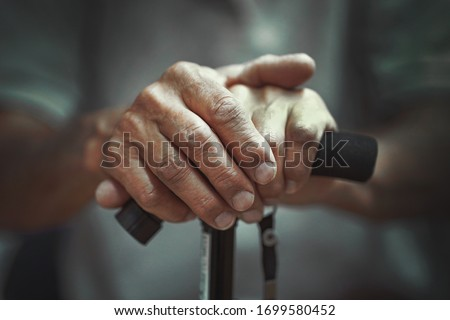 Hand of a old man holding a cane. Senior Man Holding Cane. Close-up Of old man Hands On Walking Stick. #1699580452