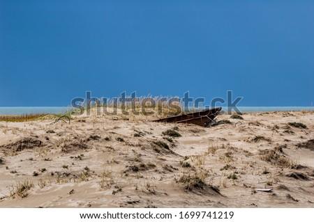 Sand dunes in Barents Sea coastal area, Timan tundra, Nenets Autonomous Okrug, Arkhangelsk Region, Russia