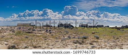 Abandoned Tobseda village, Barents Sea coastal area, Timan tundra, Nenets Autonomous Okrug, Arkhangelsk Region, Russia #1699746733