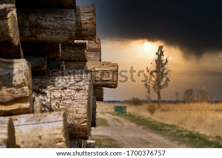 Natural wooden background - closeup of chopped firewood. Firewood stacked and prepared for winter Pile of wood logs. Royalty-Free Stock Photo #1700376757